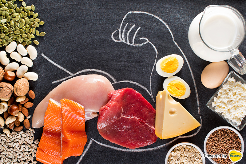 Protein: The Right nutrient for Growing Strong